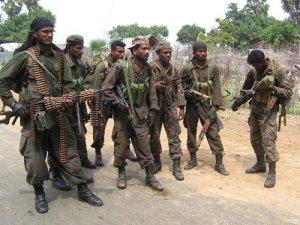 Tamil Rebels